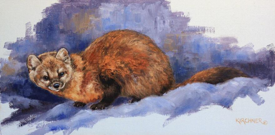 Pine Marten, Pine Martin Painting, Weasel, Pine marten artwork, western art, western wildlife, western wildlife art, western wildlife painting, nature art, nature paintings, nature, leslie kirchner art Leslie Kirchner